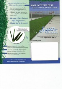 Sapphire buffalo Turf for your Home